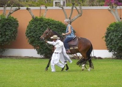 Chalan leads Paso Fino and rider